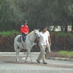 Horses and Special Needs Children