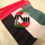 Celebrating 41st UAE National Day in Abu Dhabi