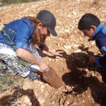 Planting Olive Tree in Palestine on Land Day